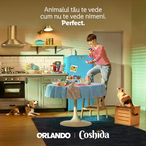 Orlando si Coshida